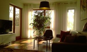 Photo of Apartment My Extra Home