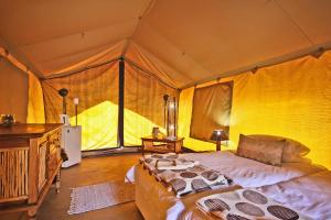 Double Luxury Tent