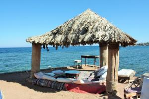 Photo of Dahab Bay Hotel