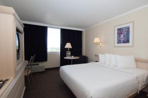 Executive Business Queen Room