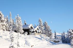 Photo of Gaustatoppen Booking