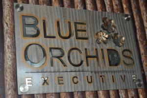 Photo of Hotel Blue Orchids Executive