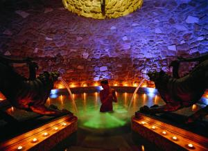 Hotel ADLER Thermae Spa & Relax Resort (9 of 33)