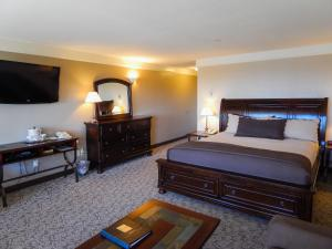 Pet Friendly King Suite with Spa Bath
