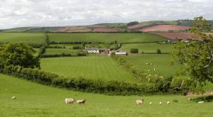 Combe Lancey Farmhouse B&B in Crediton, Devon, England