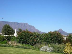 Cotswold House, Guest houses  Cape Town - big - 26
