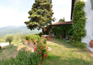 Alle Monache, Holiday homes  Monsagrati - big - 22
