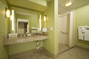 One-Bedroom Suite with Roll In Shower - Hearing Accessible/Non-Smoking