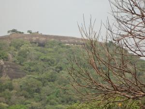 Sigiri Forest View