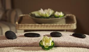 White Lotus Day Spa, Resort  Narbethong - big - 22