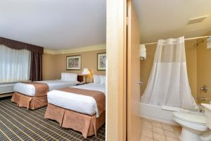 Poolside Suite with Two Double Beds - Non-Smoking