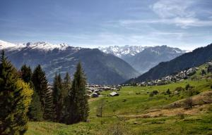 Fouquet Apartments, Chalets  Verbier - big - 17