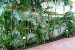 Silver Sands Sunshine - Angaara, Hotels  Candolim - big - 14