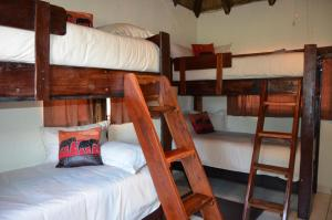 Standard Twin Room with Private Bathroom - Giraffe Room