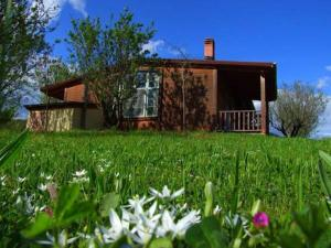 Villa Rustica, Apartments  Konitsa - big - 54