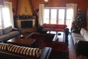 Villa Rustica, Apartments  Konitsa - big - 71