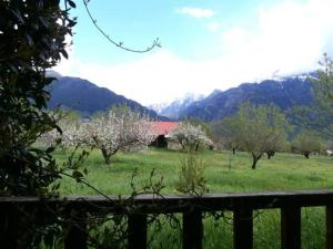 Villa Rustica, Apartments  Konitsa - big - 10