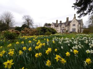 Langrish House - 50 of 53