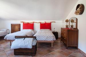 Bed and Breakfast Il Faggio, Apartmanok  Villar San Costanzo - big - 7