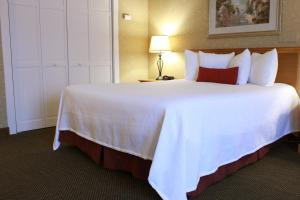 Queen Room - Pet Friendly - Non-Smoking