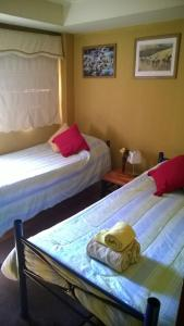 Superior Twin Room - Las Rosas