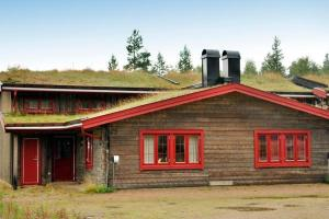 Three-Bedroom Holiday home in Sälen 3
