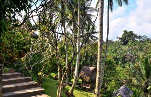 The Kampung Resort Ubud - 7 of 39