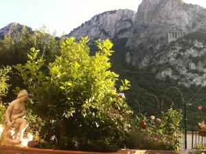 B&B Palazzo a Mare, Bed & Breakfasts  Capri - big - 40