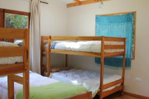 Bunk Bed in 5-Bed Dormitory Room