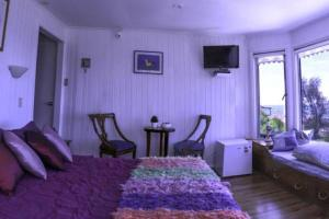 Lezaeta Bed and Breakfast, Panziók  Algarrobo - big - 9