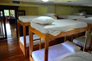 Bunk Bed in 8-Bed Mixed Dormitory Room