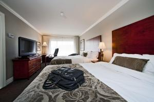 Superior Queen Room with Two Queen Beds