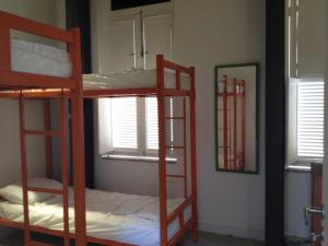 Bunk Bed in Mixed Dormitory Room (6 People)