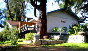 Hillcrest Country Inn Bed and Breakfast