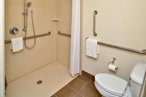 King Studio Suite - Disability Access Roll in Shower
