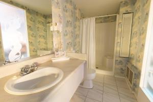 Deluxe Suite with Fireplace and Spa Bath