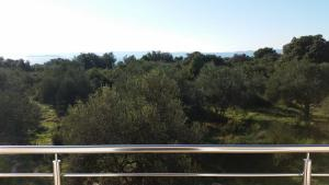 Olive Apartments, Appartamenti  Ugljan - big - 18