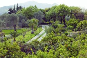 Olive Farm Of Datca Guesthouse - 24 of 26