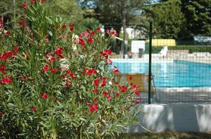 Photo of Camping Aquileia