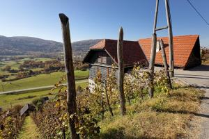 Photo of Vineyard Cottage Ludvikov Hram