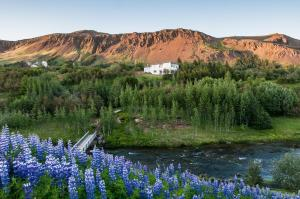Photo of Iceland's Guesthouse