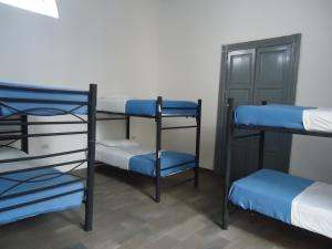Single Bed in 18-Bed Dormitory Room
