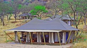 Photo of Serengeti Migration Camp
