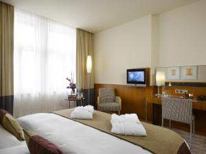 Executive Double / Twin Room