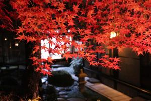 Photo of 100 Years Old Kyoto Gardener House