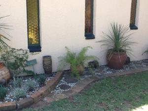 Sunflowers Guesthouse, Penziony  Kempton Park - big - 25