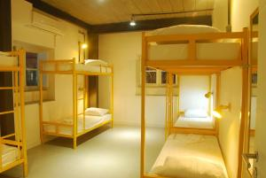 Bunk Bed in Female Dormitory Room (6 People)