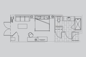 Master Suite - Disability Access