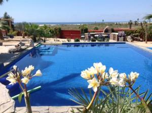 Photo of Baja Beach Oasis Eco Resort