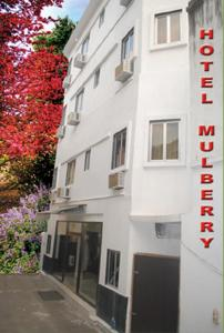 Photo of Hotel Mulberry